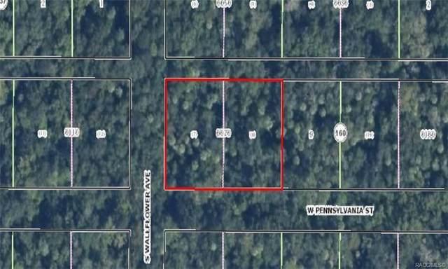 10109 W Pennsylvania Street, Homosassa, FL 34448 (MLS #793200) :: Pristine Properties
