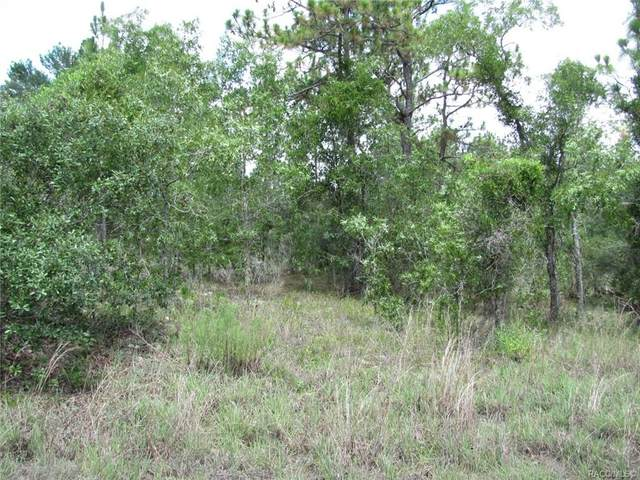 6410 N Zircon Point, Dunnellon, FL 34433 (MLS #793211) :: Plantation Realty Inc.