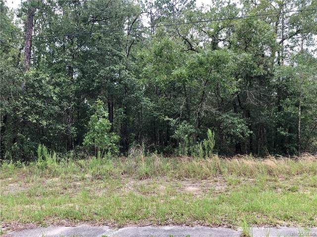 10036 N Lindon Drive, Citrus Springs, FL 34434 (MLS #793220) :: Pristine Properties