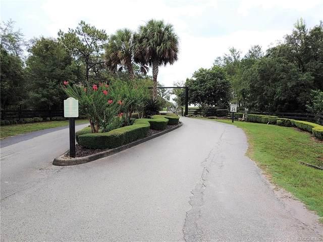 5583 E Sweetgrass Court, Floral City, FL 34436 (MLS #793249) :: Plantation Realty Inc.