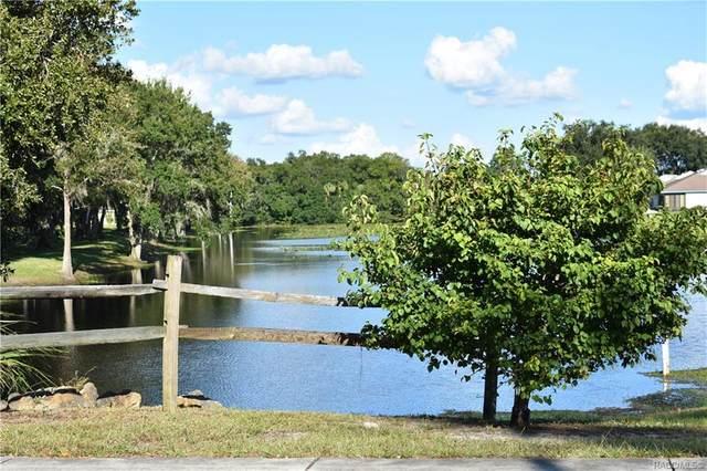 9654 E White Egret Path, Inverness, FL 34450 (MLS #793268) :: Plantation Realty Inc.