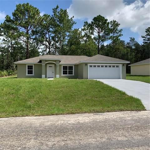 1633 W Lamplighter Street, Citrus Springs, FL 34434 (MLS #793269) :: Pristine Properties