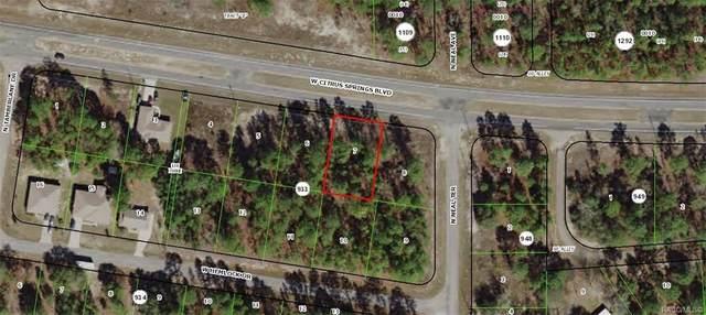 818 W Citrus Springs Boulevard, Citrus Springs, FL 34434 (MLS #793276) :: Pristine Properties