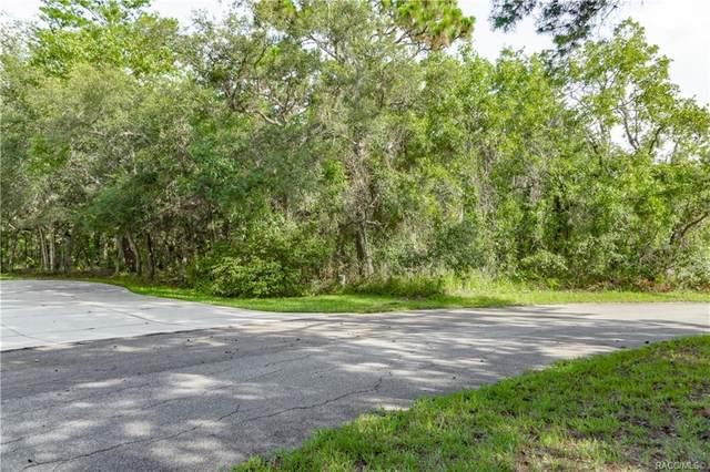 13 Mimosa Court E, Homosassa, FL 34446 (MLS #793280) :: Plantation Realty Inc.