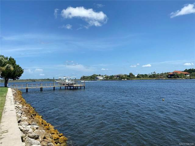 1300 NW 19TH Court, Crystal River, FL 34428 (MLS #793296) :: Pristine Properties