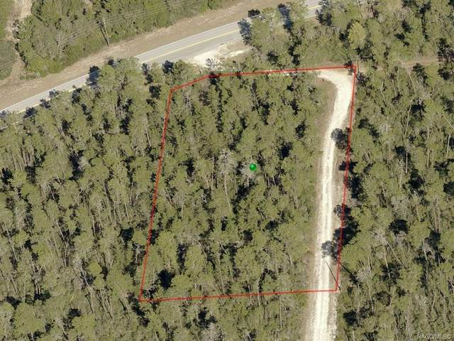 4710 W Gina Marie Lane, Dunnellon, FL 34433 (MLS #793304) :: Plantation Realty Inc.