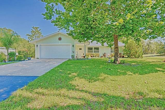 7663 W Tolle Lane, Dunnellon, FL 34433 (MLS #793314) :: Plantation Realty Inc.