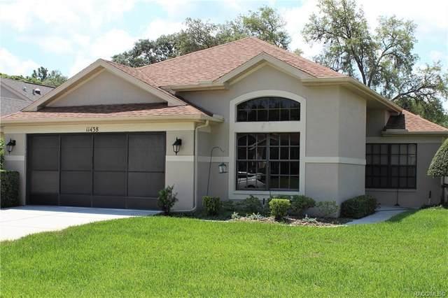 11438 Deercroft Court, Spring Hill, FL 34609 (MLS #793335) :: Plantation Realty Inc.