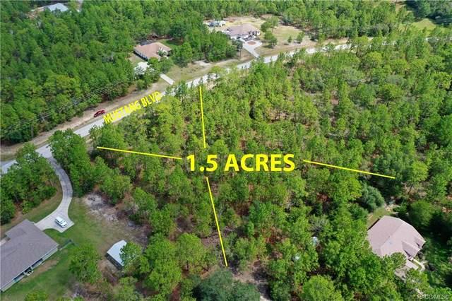 4298 W Mustang Boulevard, Beverly Hills, FL 34465 (MLS #793337) :: Plantation Realty Inc.