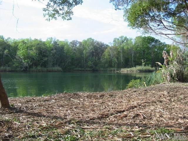 1227 N Circle Drive, Crystal River, FL 34429 (MLS #793338) :: Plantation Realty Inc.