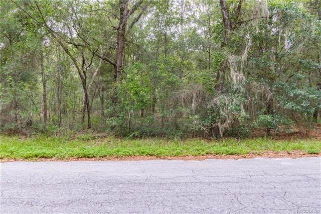 7688 W Crystal River Place, Dunnellon, FL 34433 (MLS #793339) :: Plantation Realty Inc.
