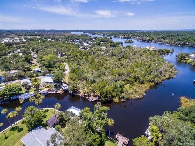 5644 S Sea Otter Path, Homosassa, FL 34448 (MLS #793341) :: Plantation Realty Inc.