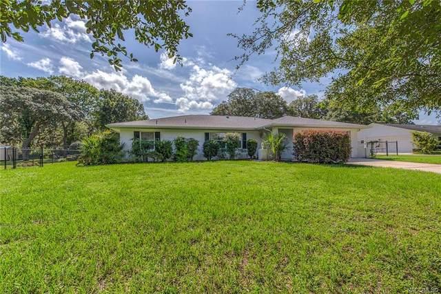 2901 S Jean Avenue, Inverness, FL 34450 (MLS #793391) :: Plantation Realty Inc.