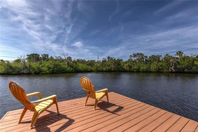 14550 W Black Creek Drive, Crystal River, FL 34429 (MLS #793397) :: Plantation Realty Inc.