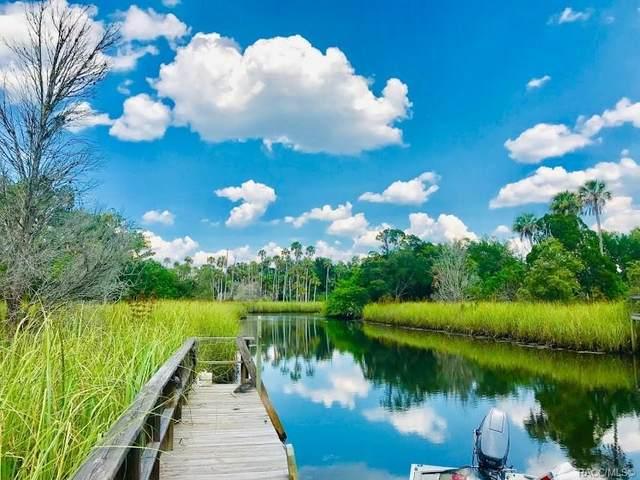2647 N Seabreeze Point, Crystal River, FL 34429 (MLS #793399) :: Plantation Realty Inc.