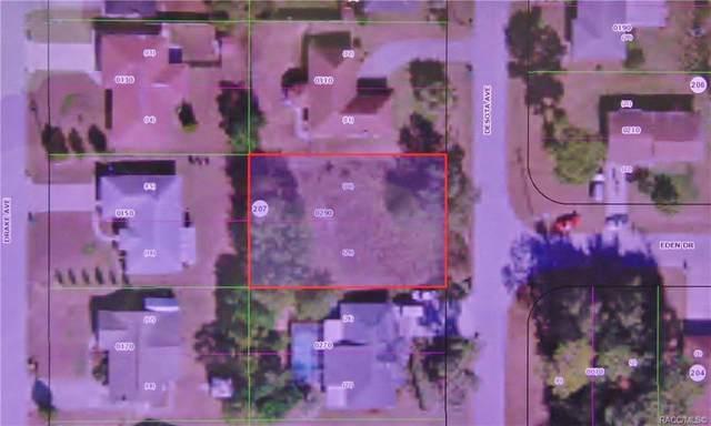 725 De Sota Avenue, Inverness, FL 34452 (MLS #793589) :: Plantation Realty Inc.