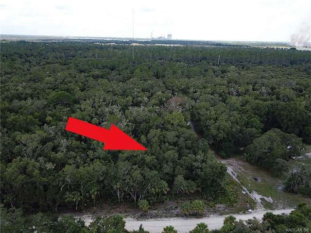 11191 N Sunfire Point, Inglis, FL 34449 (MLS #793594) :: Plantation Realty Inc.