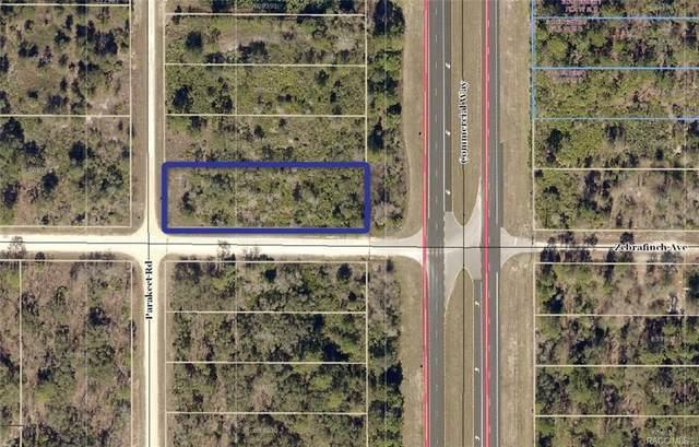 18425 Commercial Way, Weeki Wachee, FL 34614 (MLS #793598) :: Plantation Realty Inc.