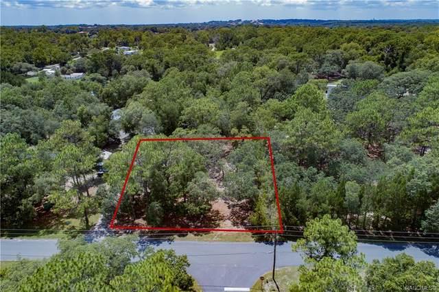 2018 N Mcgee Drive, Hernando, FL 34442 (MLS #793646) :: Plantation Realty Inc.