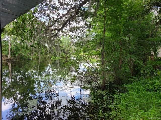 5185 S Alligator Place, Floral City, FL 34436 (MLS #793666) :: Plantation Realty Inc.