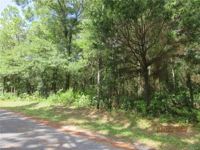 7362 W Rayburn Street, Dunnellon, FL 34433 (MLS #793710) :: Plantation Realty Inc.