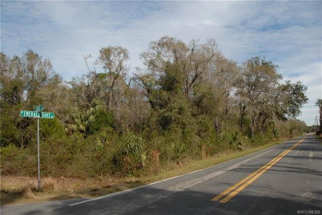 6320 N Jasper Terrace, Crystal River, FL 34428 (MLS #793769) :: Plantation Realty Inc.