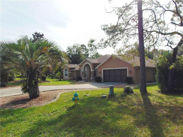 8195 N Upland Drive, Citrus Springs, FL 34434 (MLS #793782) :: Plantation Realty Inc.