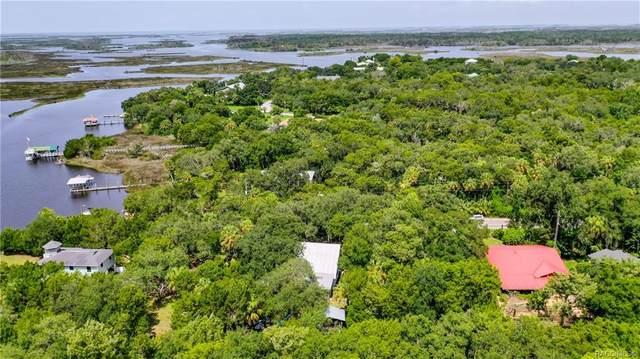 6859 S Mason Creek Road, Homosassa, FL 34448 (MLS #793783) :: Plantation Realty Inc.