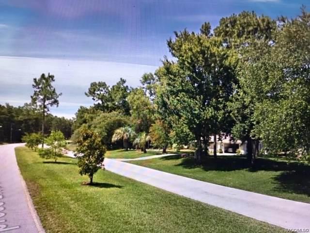 180 Cypress Boulevard E, Homosassa, FL 34446 (MLS #793800) :: Plantation Realty Inc.