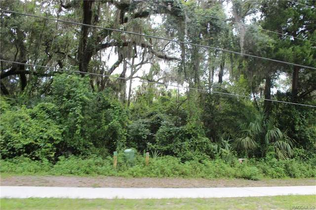 10435 W Yulee Drive, Homosassa, FL 34448 (MLS #793808) :: Plantation Realty Inc.