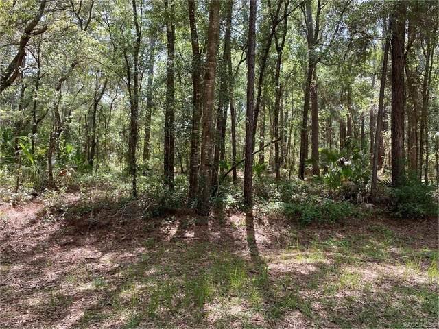 8375 N Carousel Terrace, Crystal River, FL 34428 (MLS #793828) :: Plantation Realty Inc.