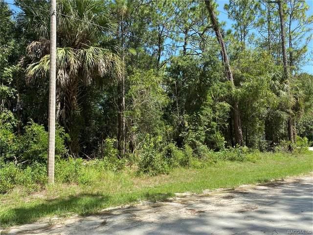 10185 W Ohio Drive, Crystal River, FL 34428 (MLS #793831) :: Plantation Realty Inc.