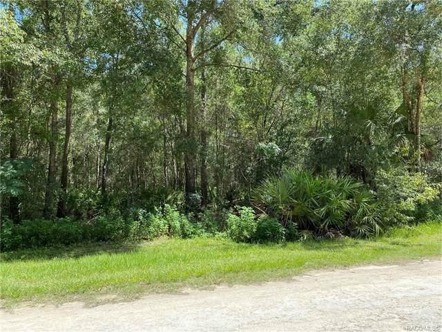 9645 W Sandra Street, Crystal River, FL 34428 (MLS #793835) :: Plantation Realty Inc.