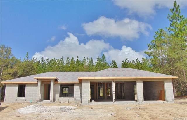 9082 N Paradisea Drive, Citrus Springs, FL 34433 (MLS #793837) :: Plantation Realty Inc.