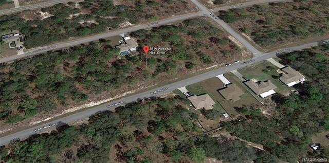 1819 W Mcneal Drive, Citrus Springs, FL 34434 (MLS #793858) :: Plantation Realty Inc.