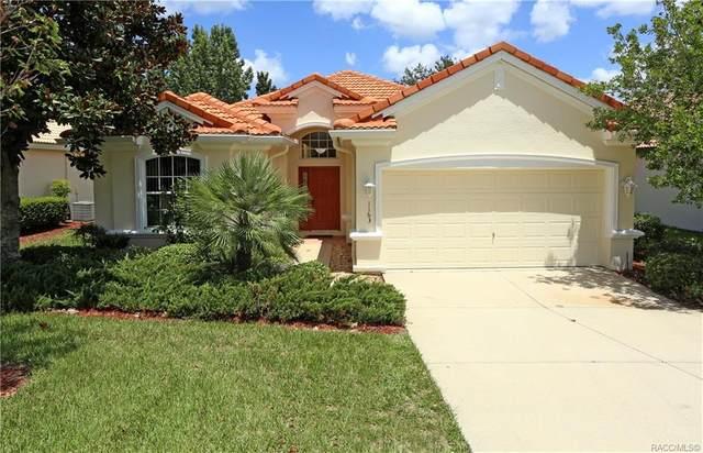 1163 W Skyview Crossing Drive, Hernando, FL 34442 (MLS #793873) :: Plantation Realty Inc.