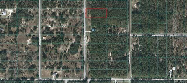 Lot 29 SW Little Cliffs Drive, Dunnellon, FL 34431 (MLS #793900) :: Plantation Realty Inc.