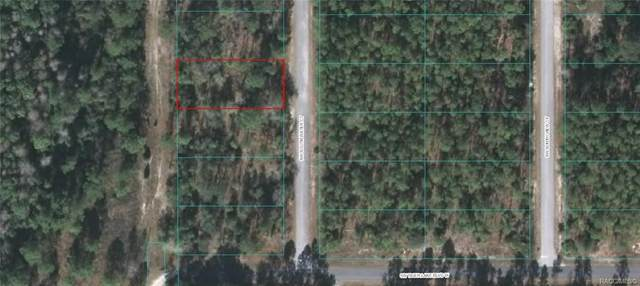 Lot 21 SW South Water Court, Dunnellon, FL 34431 (MLS #793901) :: Plantation Realty Inc.