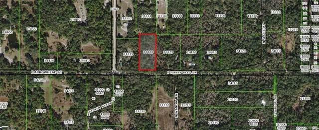 6287 E Turkey Trail Drive, Hernando, FL 34442 (MLS #793907) :: Plantation Realty Inc.