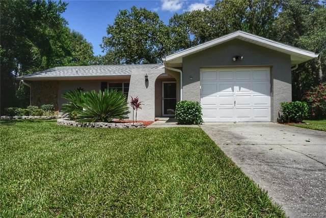 10049 N Deltona Boulevard, Citrus Springs, FL 34434 (MLS #793915) :: Plantation Realty Inc.