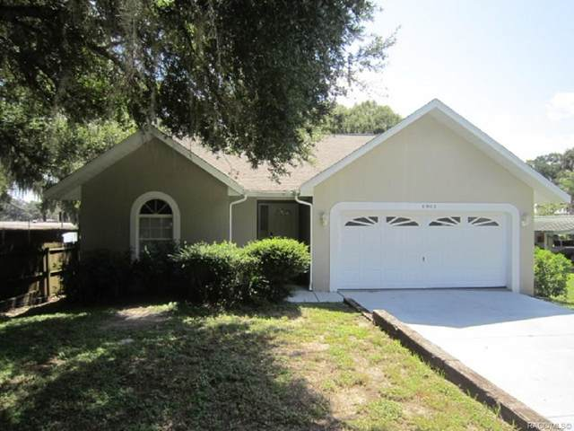 6905 S Aloysia Avenue, Floral City, FL 34436 (MLS #793928) :: Plantation Realty Inc.