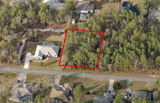 2499 E Newhaven Street, Inverness, FL 34453 (MLS #793939) :: Plantation Realty Inc.
