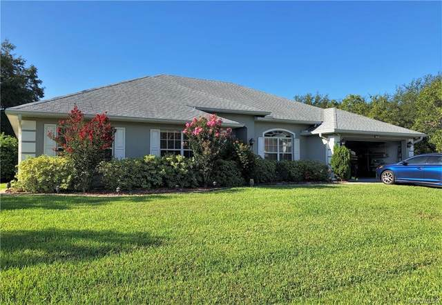 16 Smilax Court N, Homosassa, FL 34446 (MLS #793961) :: Plantation Realty Inc.