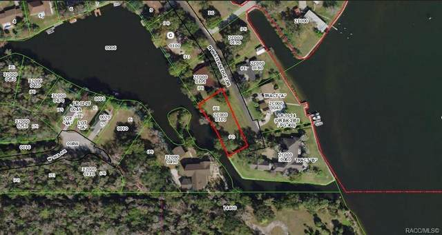 2098 N Watersedge Drive, Crystal River, FL 34429 (MLS #793965) :: Plantation Realty Inc.