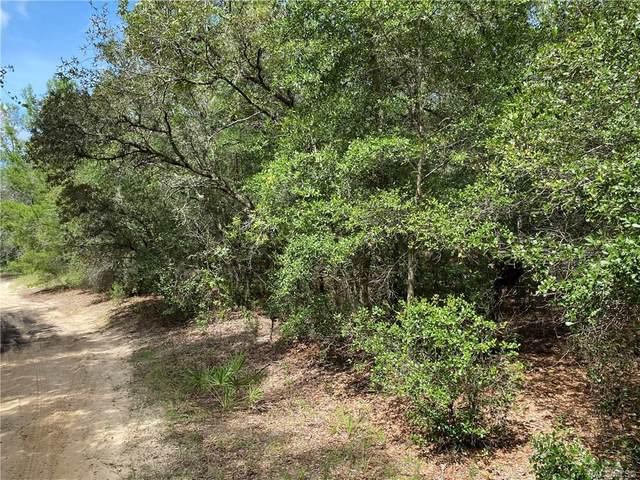 107 N Crestview Avenue, Inverness, FL 34452 (MLS #793967) :: Plantation Realty Inc.