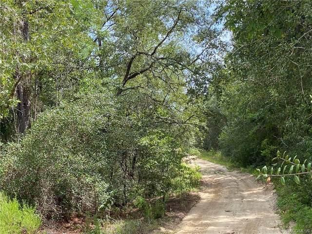 408 S Crestview Avenue, Inverness, FL 34452 (MLS #793968) :: Plantation Realty Inc.