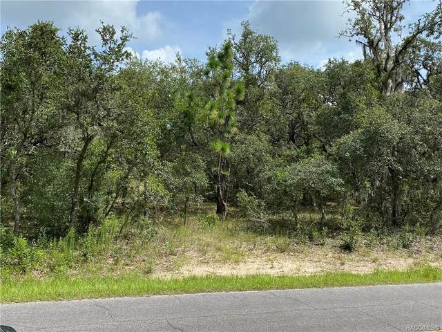 3097 E Dawson Drive, Inverness, FL 34453 (MLS #793970) :: Pristine Properties