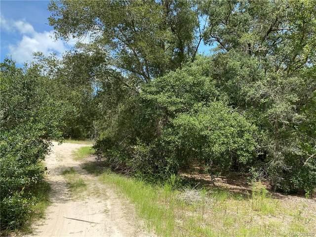 3003 Polk Street W, Inverness, FL 34453 (MLS #793976) :: Plantation Realty Inc.