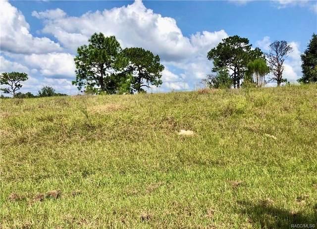 4455 E Liza Knowlton Drive, Inverness, FL 34452 (MLS #793998) :: Plantation Realty Inc.