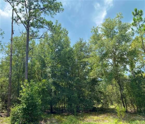0 Sw Lakeland Heights Avenue, Dunnellon, FL 34431 (MLS #794005) :: Plantation Realty Inc.